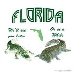 Florida Tourist