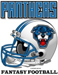 FFL Panthers Helmet