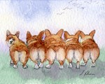 Five corgi butts