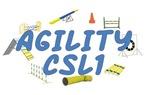 CSL1 Agility Title