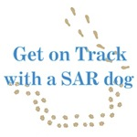 On Track with SAR