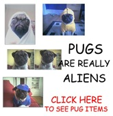 PUGS ARE REALLY ALIENS