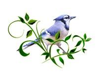 <b>BLUE JAY AMONG LEAVES</b>