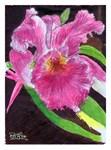 Wiggins Flower