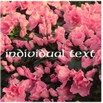Flowers with YOUR text