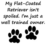 Well Trained Flat-Coated Retriever Owner