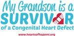 CHD Survivor - Grandson