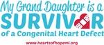CHD Survivor - Grand Daughter