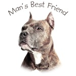 Man's Best Friend - Pit Bull
