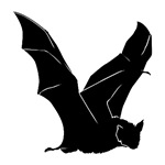 Flying Bat Silhouette