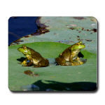 Wildlife and Nature Mousepads