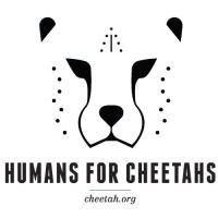 Humans for Cheetahs