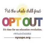 Opt Out 2017