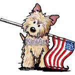 USA Cairn Terrier Patriot