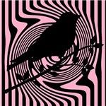 Pink and Black Bird