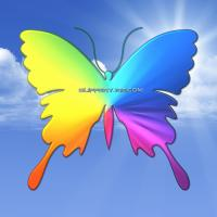 Pride Butterfly