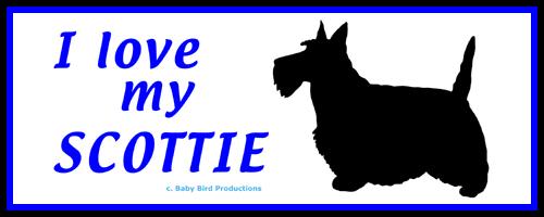 I LOVE MY DOG - SCOTTIE