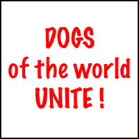 DOGS UNITE T-SHIRTS & GIFTS