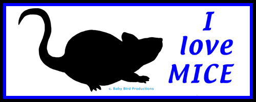 MOUSE T-SHIRTS & GIFTS