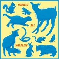 PROTECT ALL WILDLIFE