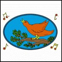 SONG BIRD ON KIDS T-SHIRTS