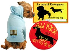 For your dog