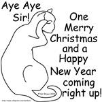 Aye Aye Sir!!