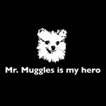 Mr. Muggles is my hero