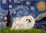 STARRY NIGHT<br>& White Pekingnese