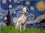 STARRY NIGHT<br>& Dalmatian