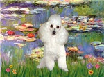 WATER LILIES<br>& White Poodle (Toy/Min)