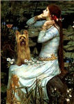 OPHELIA (SEATED)<br>& Silky Terrier
