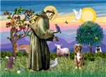 Saint Francis<br>& Australian Shepherd #5