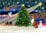 CHRISTMAS MAGIC<br>& Basenji