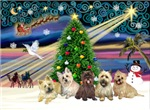 CHRISTMAS MAGIC<br>& 5 Cairn Terriers