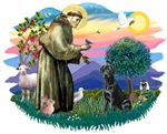 St. Frances #2 / Labrador (black)