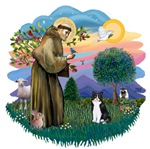 St. Francis (ff) with<br>a Black & White Cat