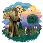 St. Francis (ff) with a<br>Tabby & White (AmSH)