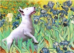 IRISES &<br>a Bull Terrier (#3)