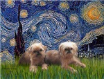 STARRY NIGHT<br>& Affenpinscher