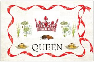 Queen Bee Coat of Arms