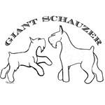 Giant Schnauzers