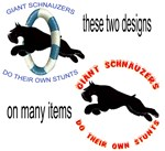 these two designs with a few differences Giant sch