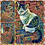 Cat Collage in Three Sections