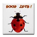 LadyBird Good Luck