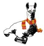 2007: Potter Llama