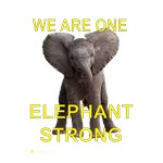 Elephant Strong