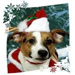 JRT Holiday: Christmas Santa Snowflakes Background
