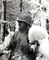 WWII 35th Division Infantry