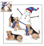 Airedales and a Snowman